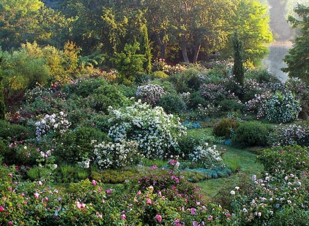 7. giardini_della_landriana_grandigiardiniitaliani