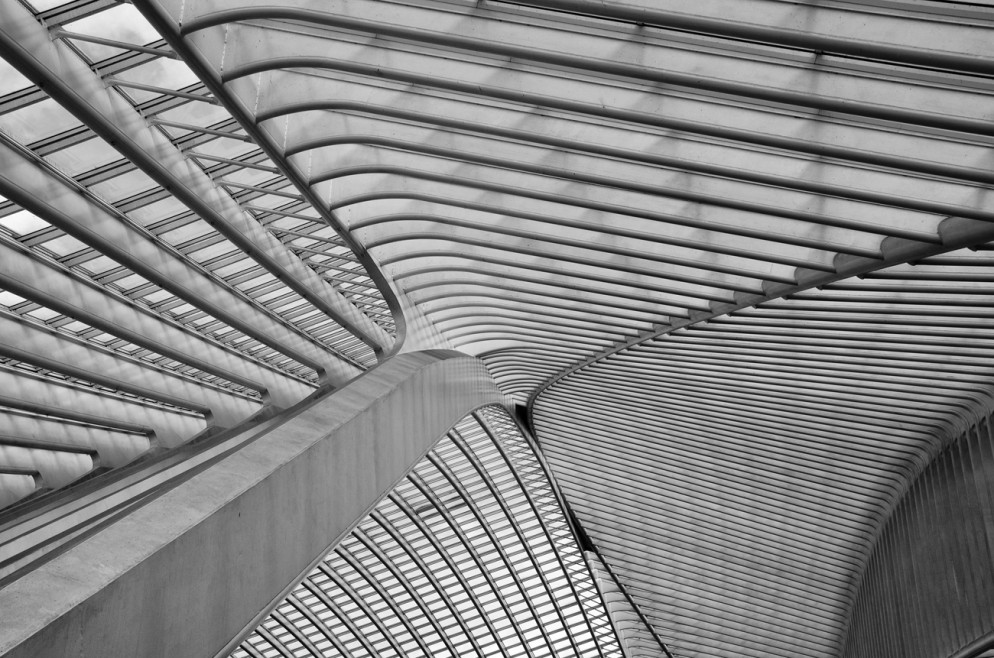 Project: The ceiling of Liège-Guillemins station in Belgium by Santiago Calatrava