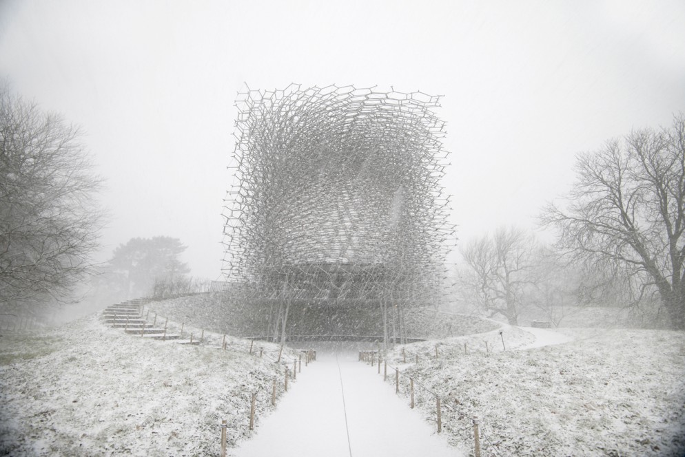 Project: The Hive at the Royal Botanic Gardens, Kew, UK during winter by Wolfgang Buttress