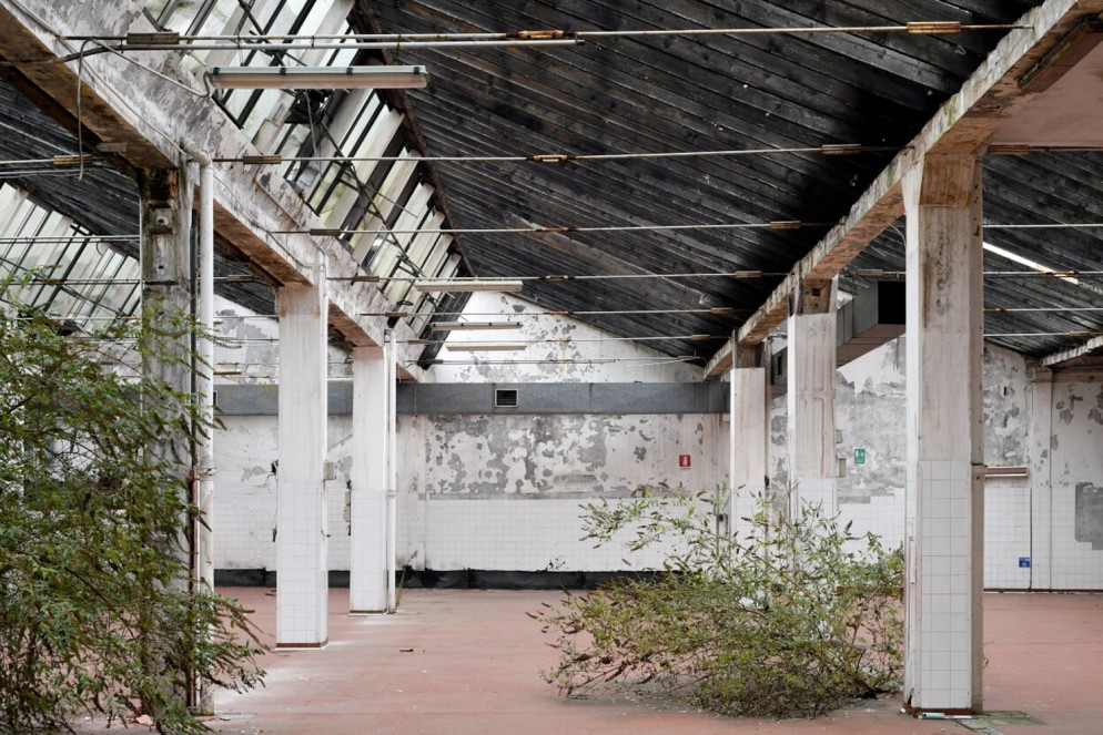 Biennale-NoLo-Foto-F.-Stipari