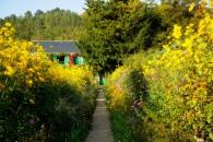 casa-monet-affitto-airbnb-14
