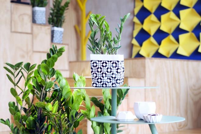 piante-resistenti-10.zamioculcas-planted-in-vases-of-geometric-pattern