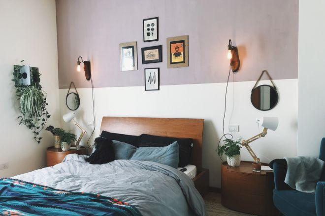 10 piante ideali per la camera da letto - LivingCorriere