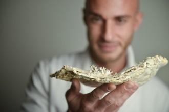 Maurizio Montalti for ARTIS-Micropia foto Bas_ Losekoot _BAS7585