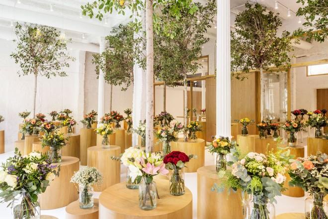 negozio-barcellona-Colvin-Florist-05