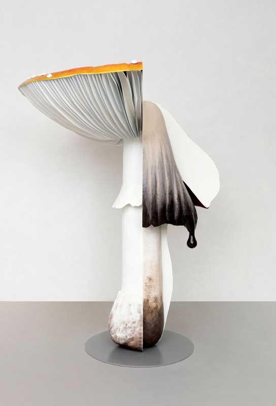 galleria Massimo De Carlo Carsten Holler Giant Triple Mushroom