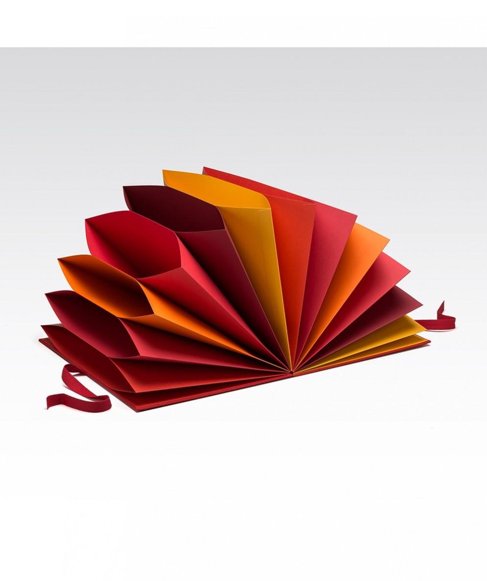 Folder Multicolore