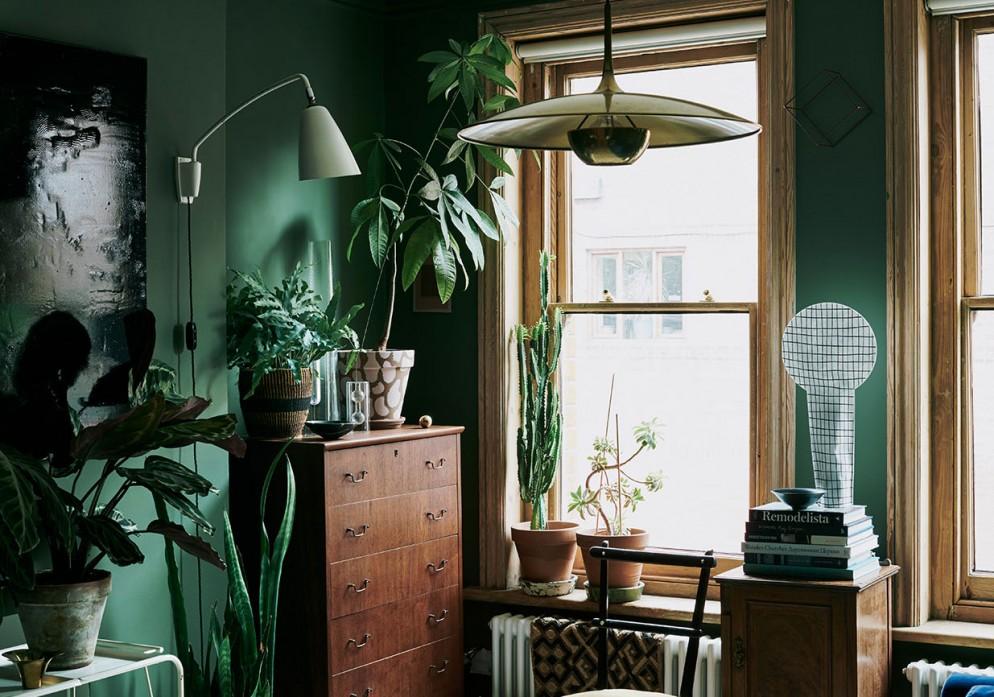 parete-verde-soggiorno-laura-fulmine-hp