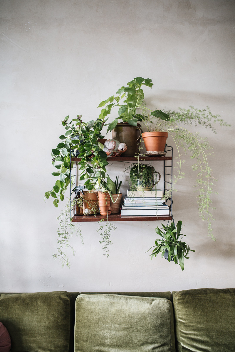 plant-tribe-libro-2.Theo_Melnik_BLN_HR-29
