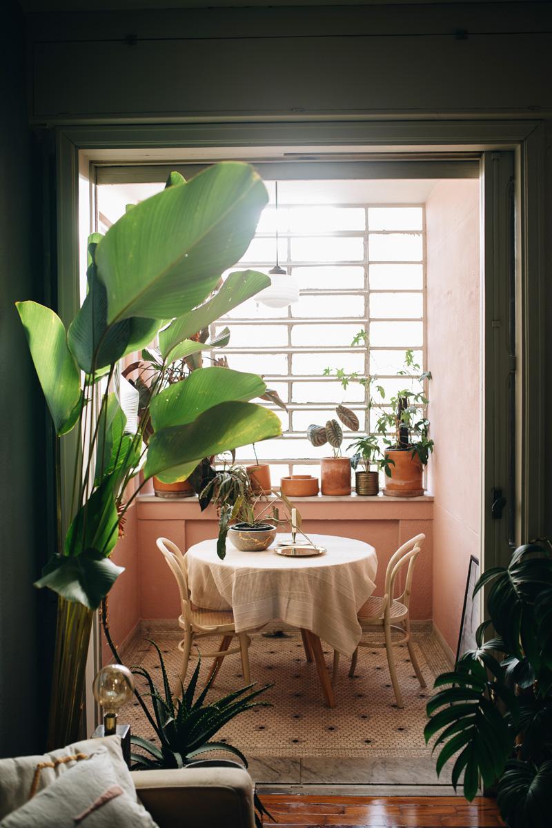 plant-tribe-libro-4. Derek_ SP (1 von 262)