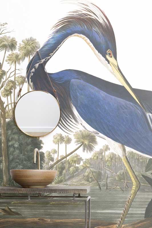 Blue Heron b