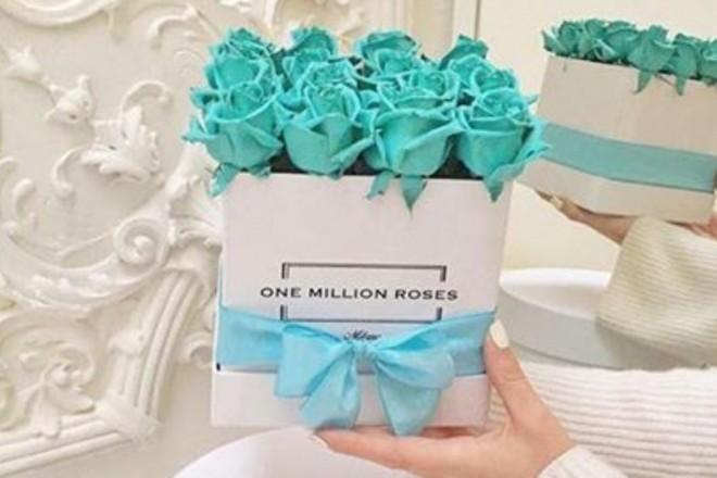 one-million-roses