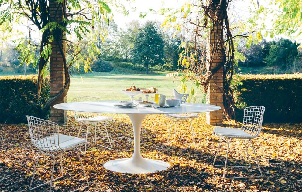 sedie-design-famose-bertoia-knoll
