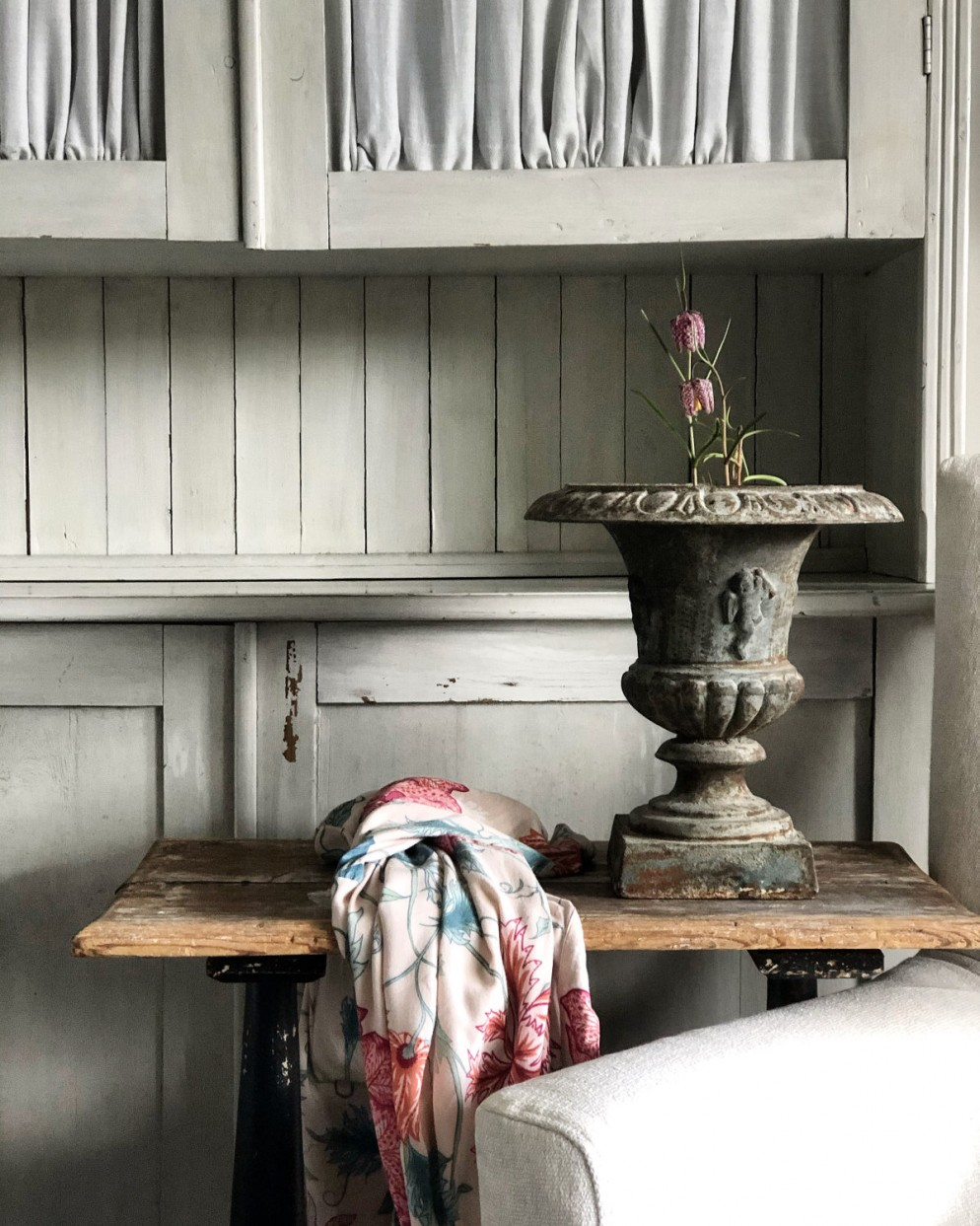 Piante da interno con fiori | Foto 1 | LivingCorriere