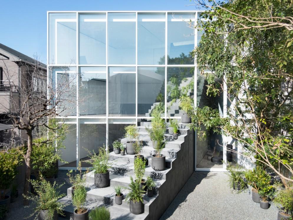 arredare-casa-con-le-piante-stairway_house50_takumi_ota_16AC012566A_316332;1