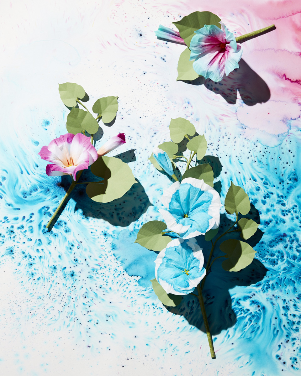 fiori-di-carta-livia-cetti-004_Morning Glory