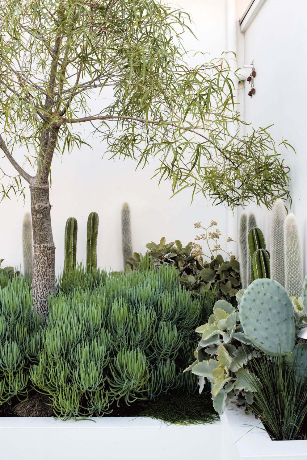 piante-giardini-verde-idee-01