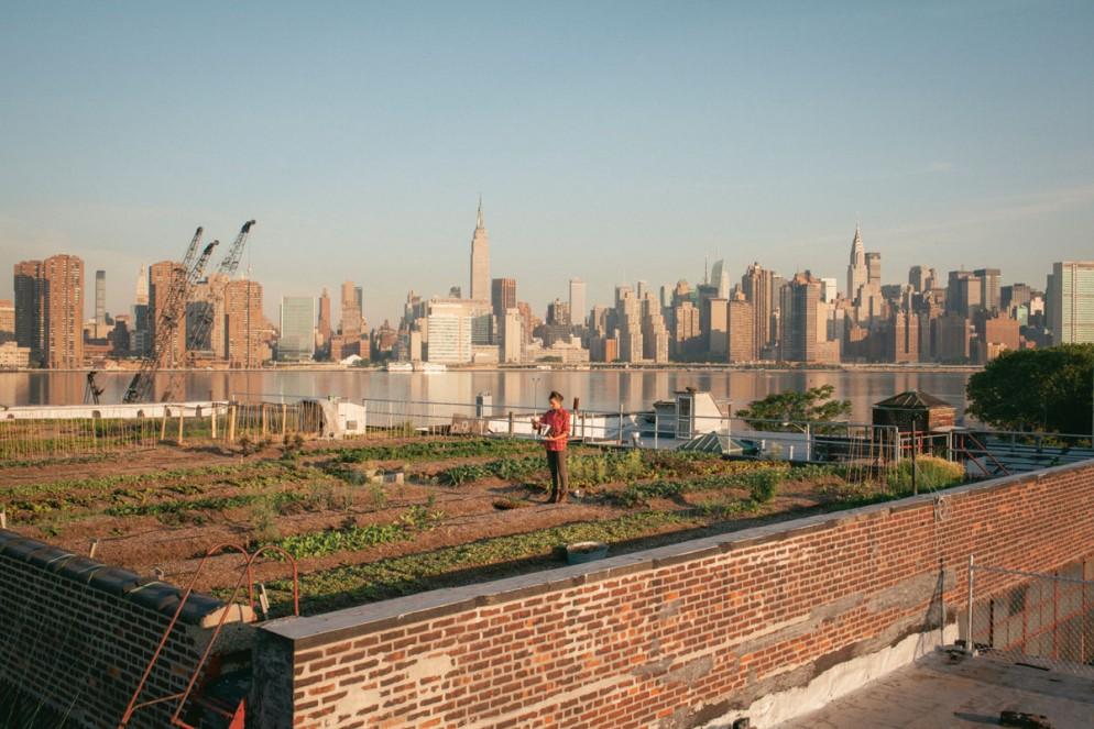 piante-giardini-verde-idee-0119