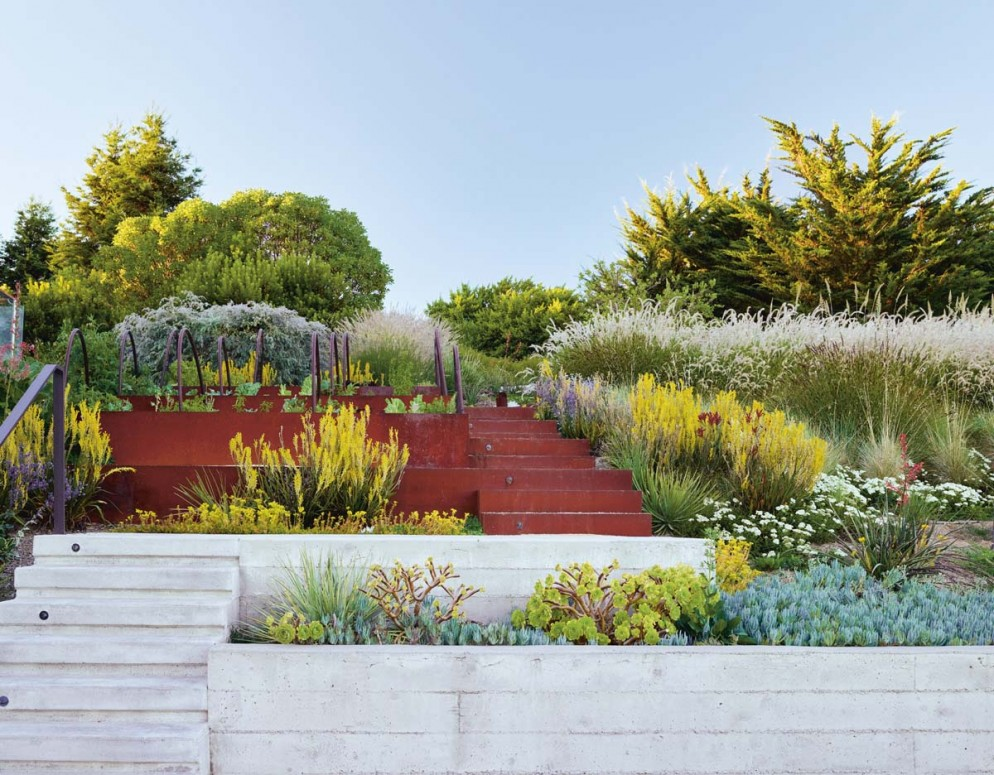 Shades of Green Landscape Architecture