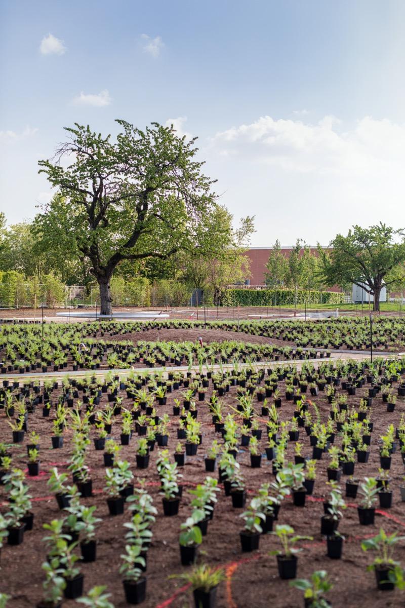 vitra-piet-oudolf-garden-living-corriere-2
