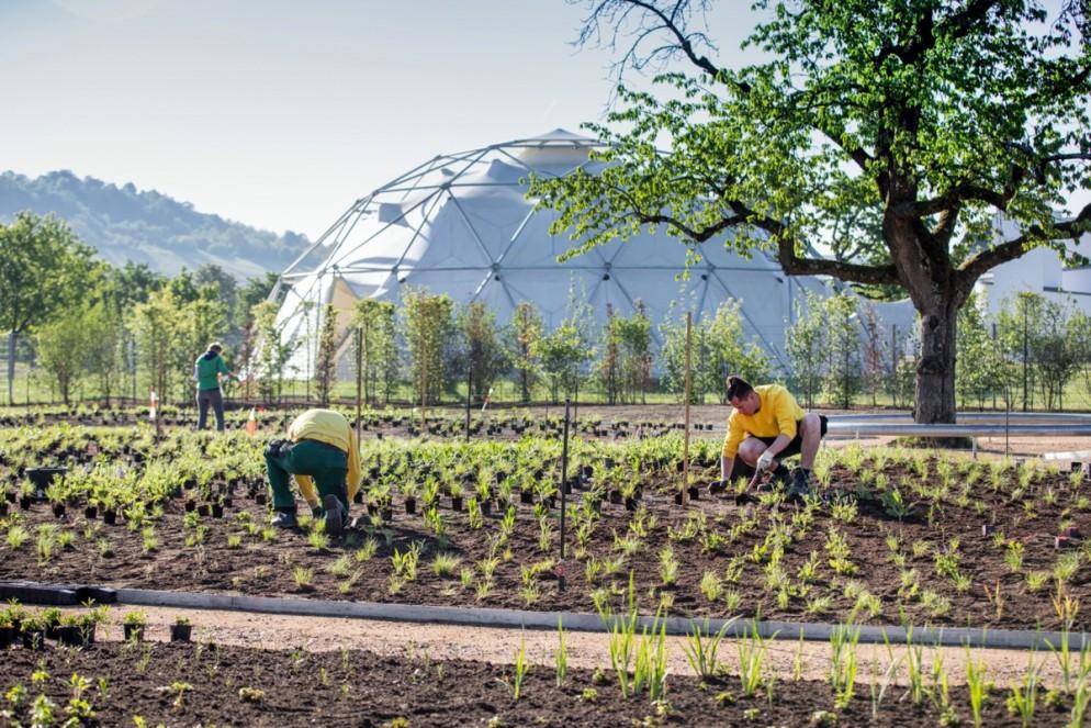 vitra-piet-oudolf-garden-living-corriere-5
