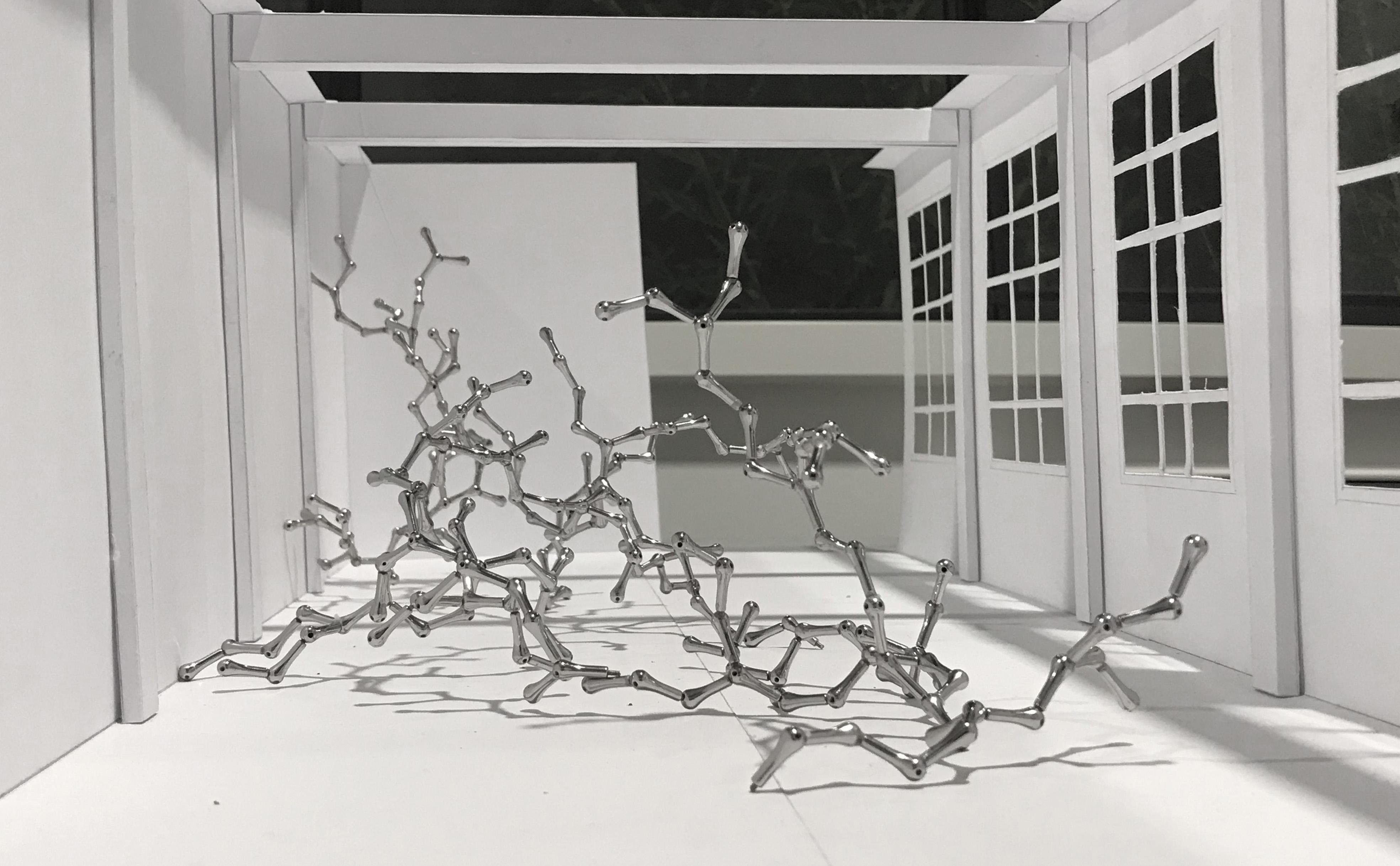 Loris Cecchini, Arborescense in 2 suites