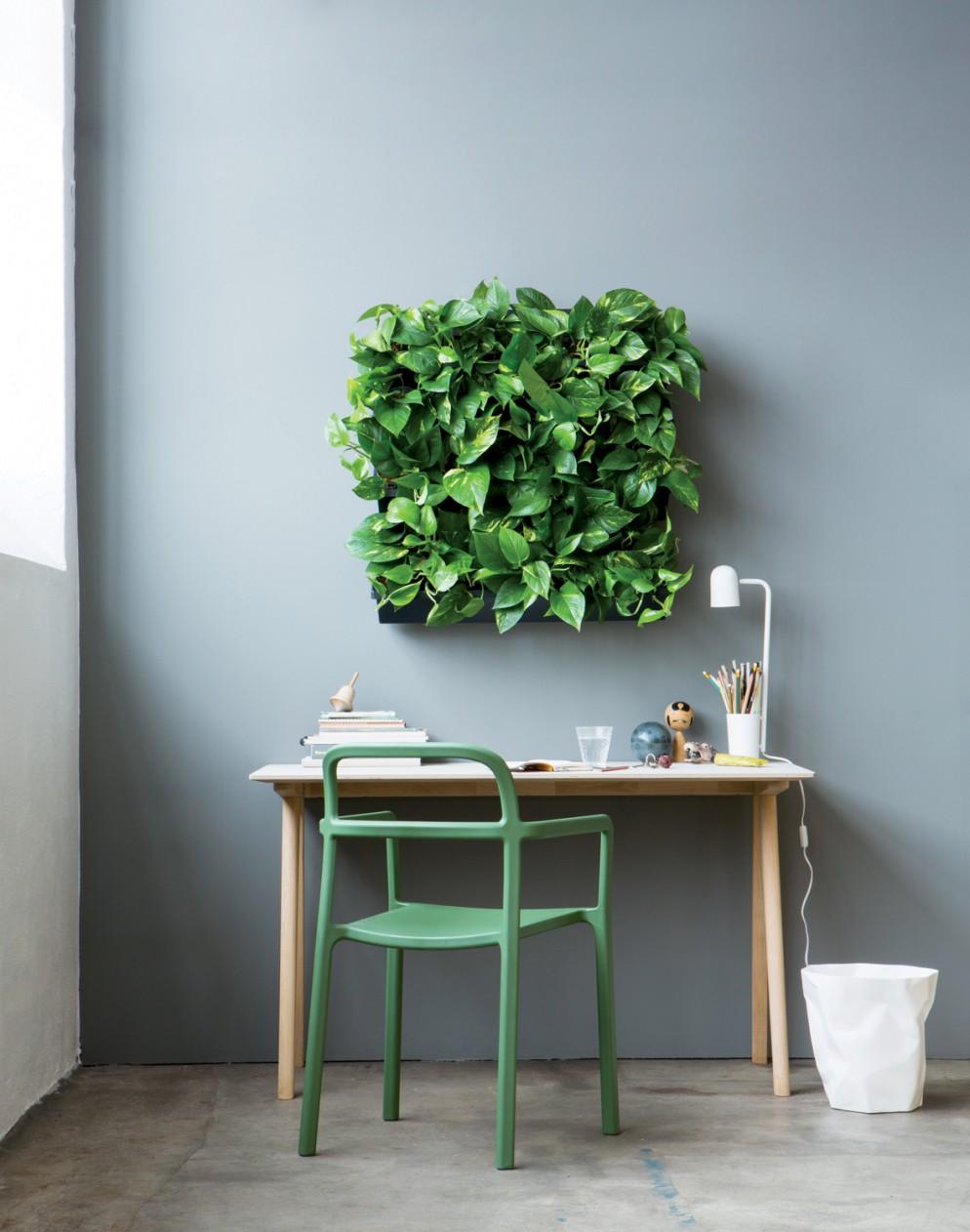 arredare-con-le-piante- 9. @ Forest air -living-corriere