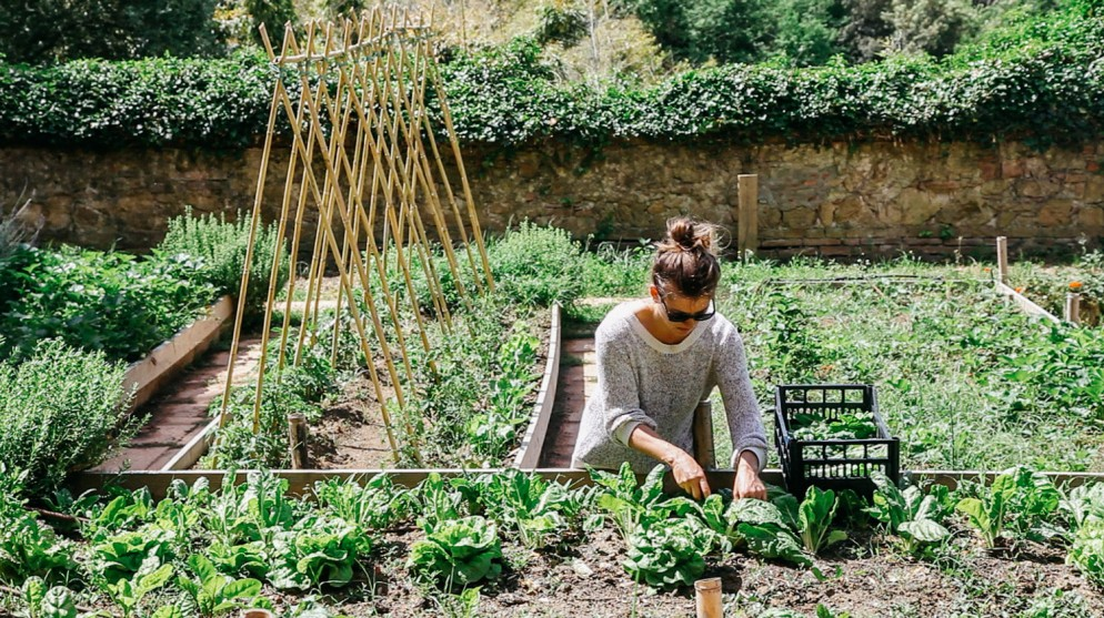 hotel-yoga-e-meditazione-livingcorriere-Villa-Lena-Organic-Kitchen-Garden,-Villa-Lena---Image-Credit-Ellie-Tsatsou