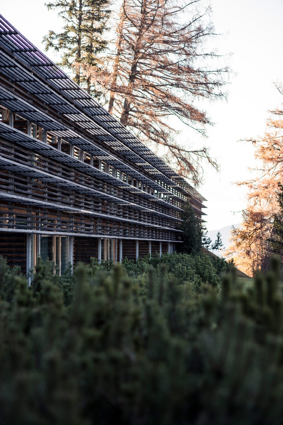 hotel-yoga-e-meditazione-livingcorriere-vigilius-mountain-resort-Florian-Andergassen-(115)