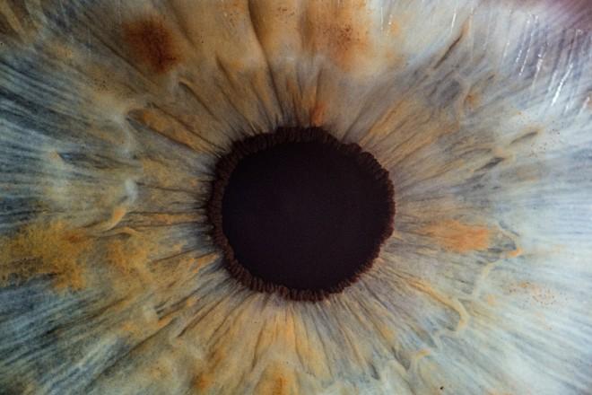 Eye_v2osk_Unsplash
