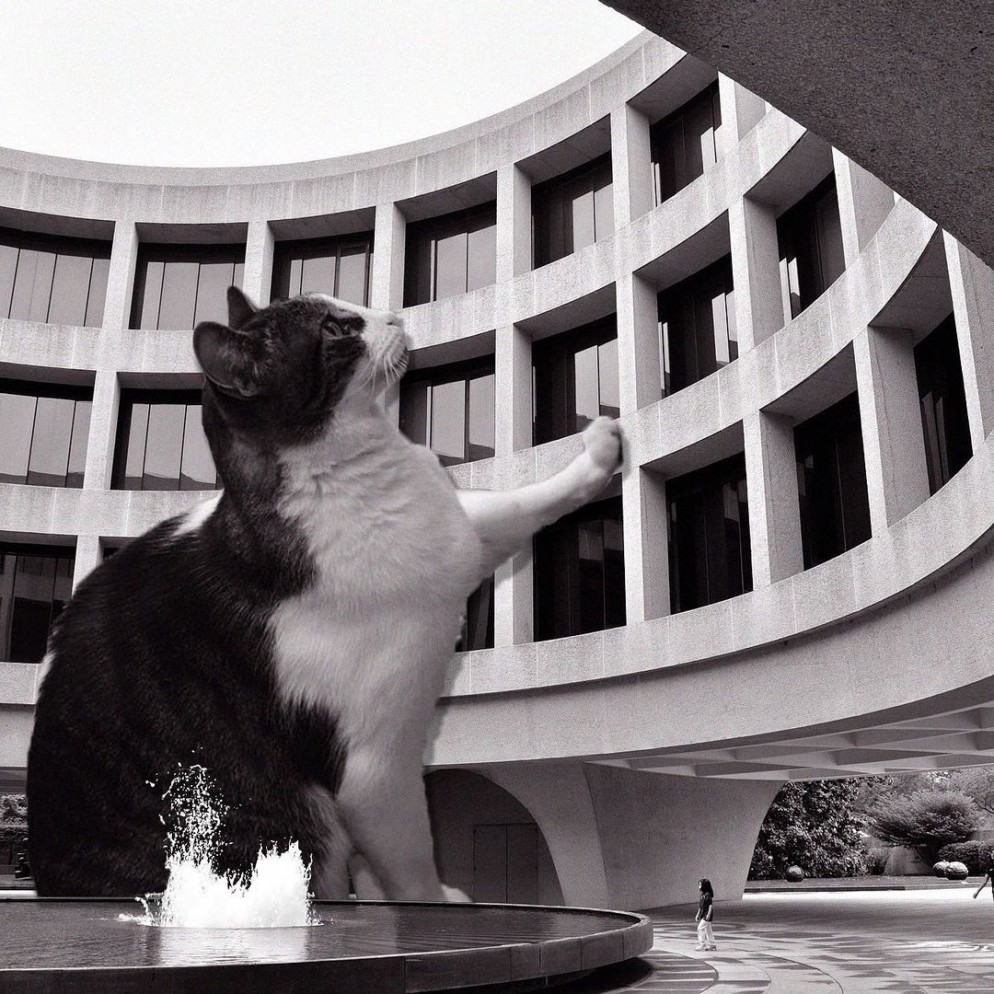 05 Cats_of_Brutalism