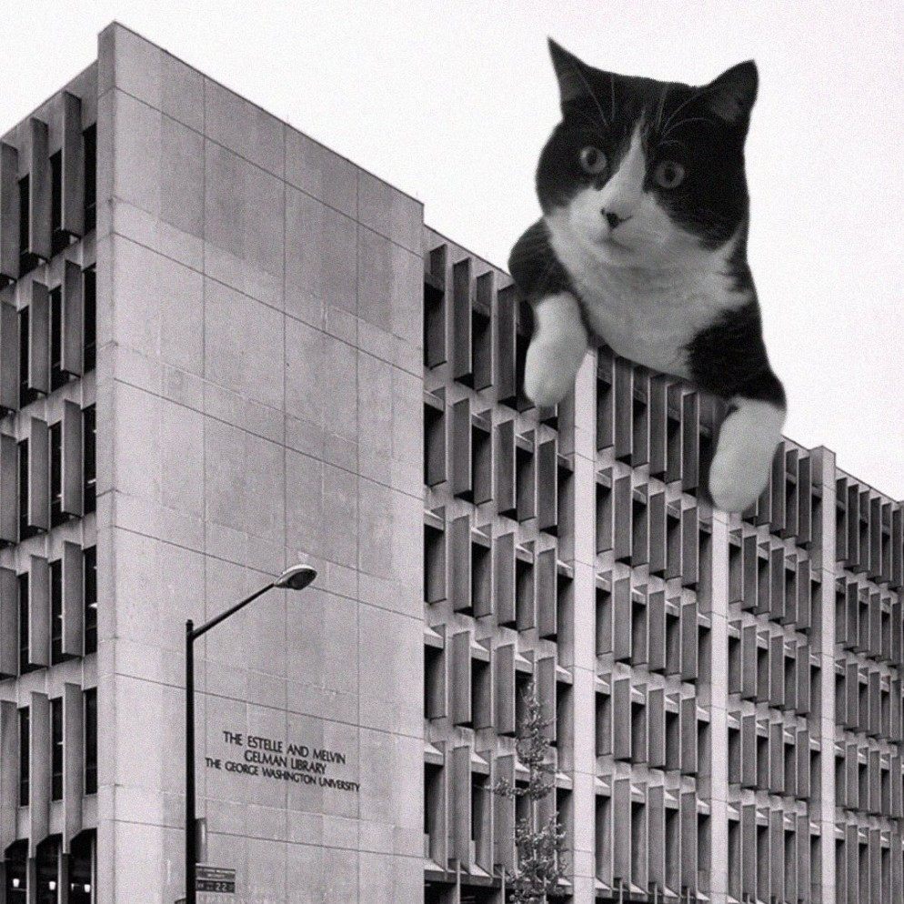 09 Cats_of_Brutalism