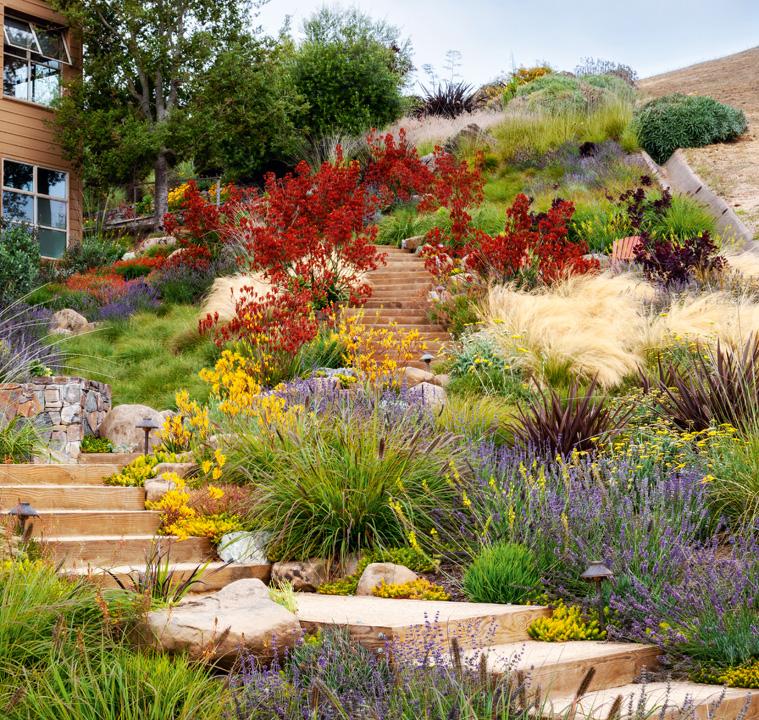 09 The Garden Elements_Phaidon