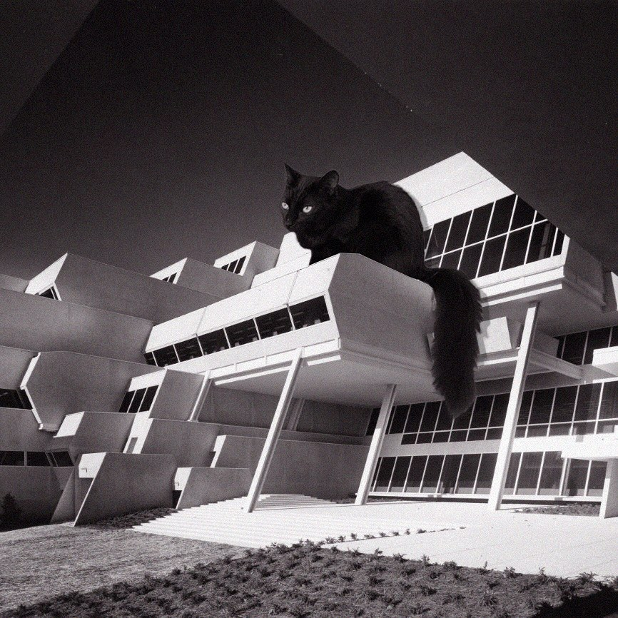 14 Cats_of_Brutalism