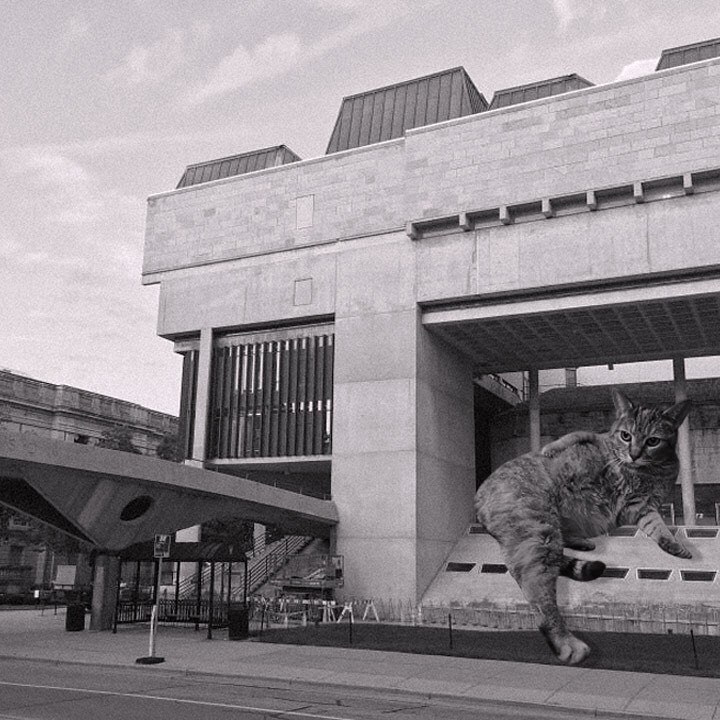 16 Cats_of_Brutalism