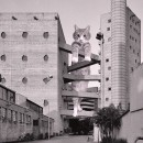 cats-of-brutalism-lina-bo-bardi-living-corriere