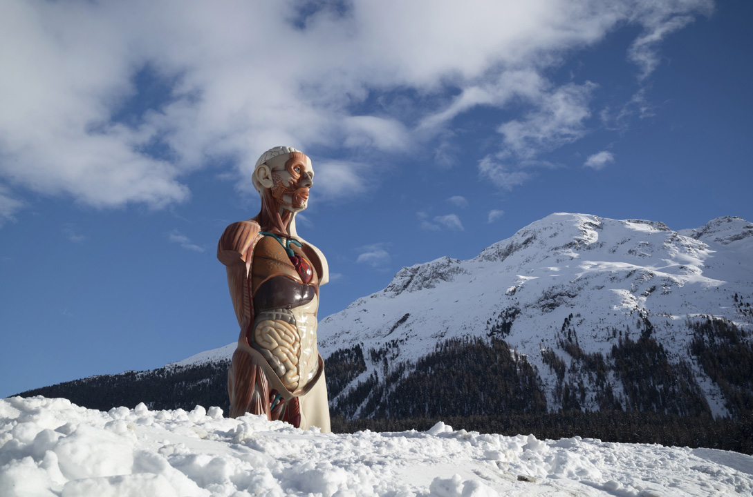 Damien Hirst conquista le Alpi