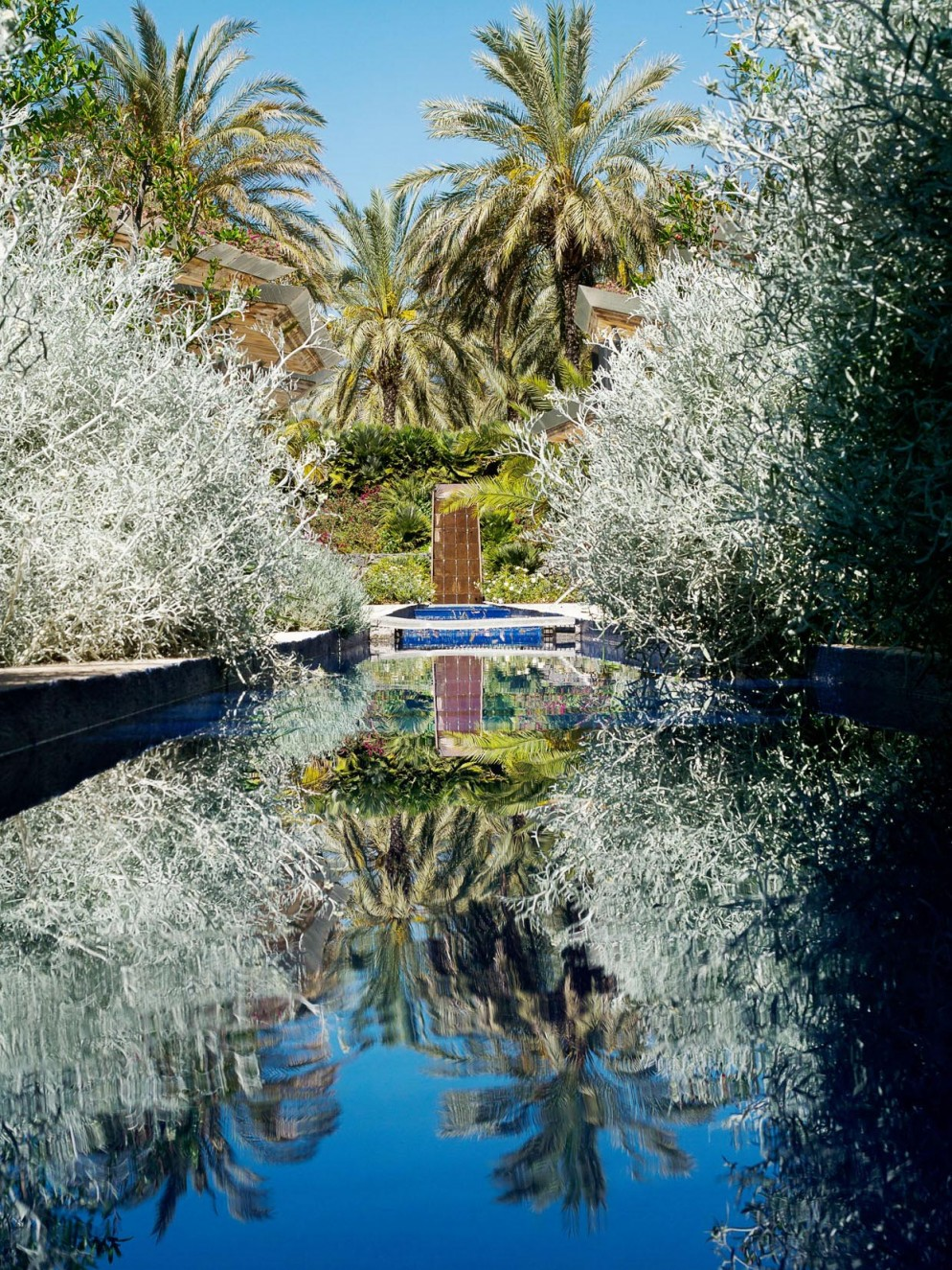 Radicepra Garden Festival 2019. Varie Giardino