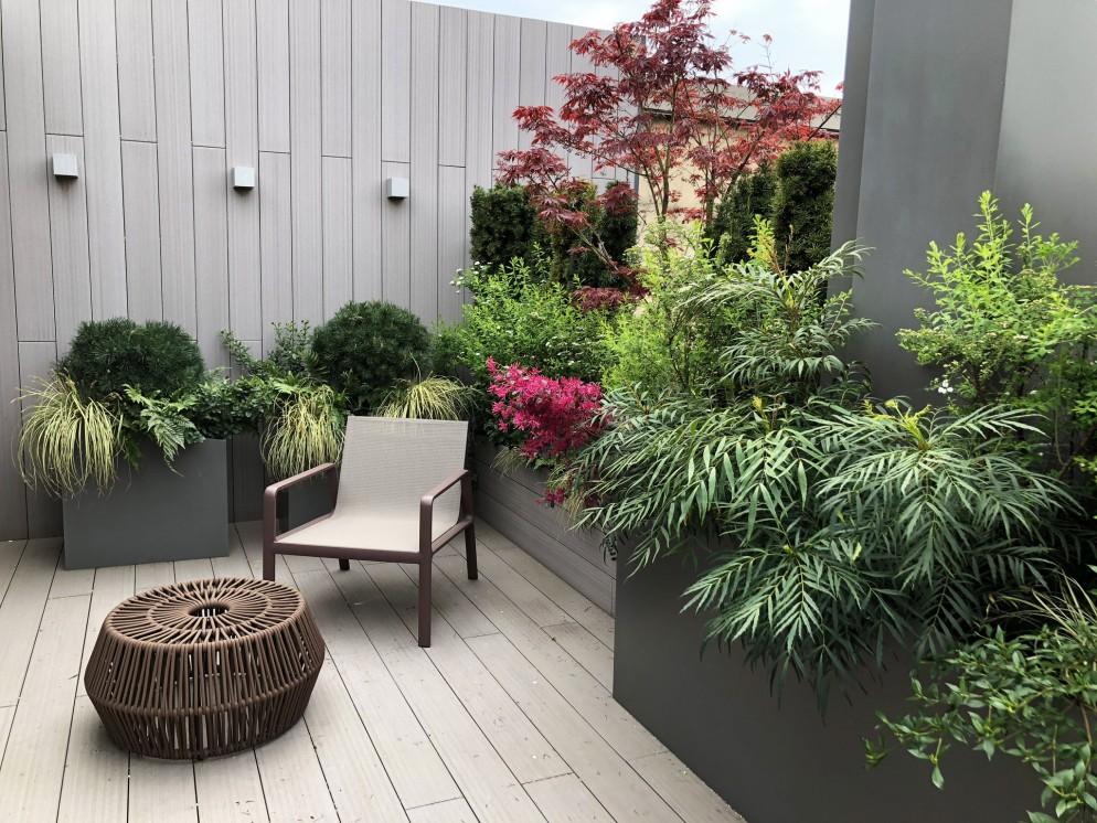piante-sempreverdi-da-balcone-3. C Mazzucchelli-living-corriere