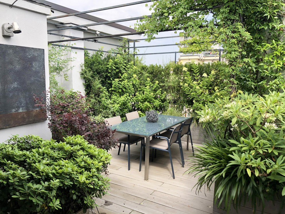 piante-sempreverdi-da-balcone-4-living-corriere
