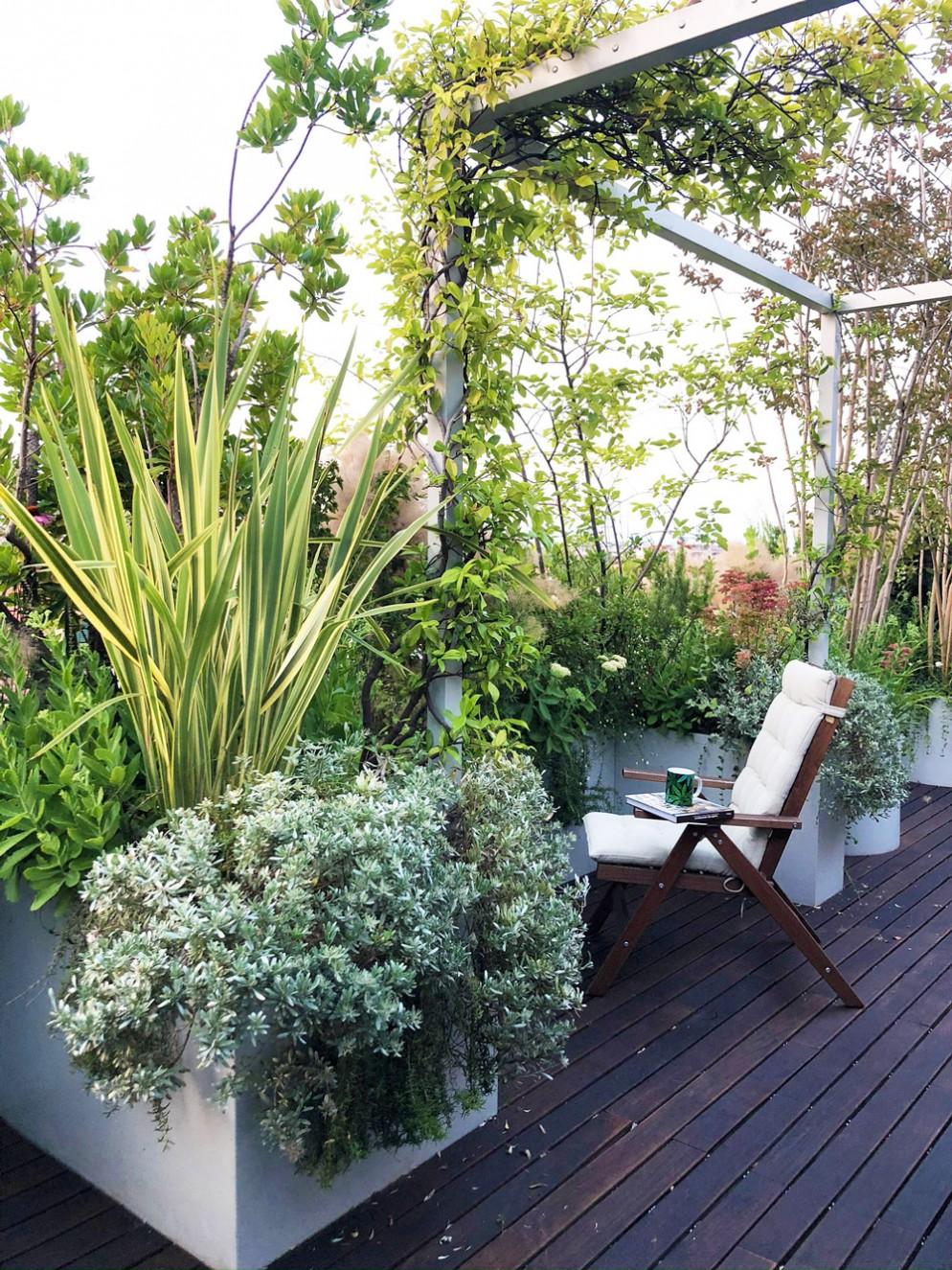 piante-sempreverdi-da-balcone-6-living-corriere
