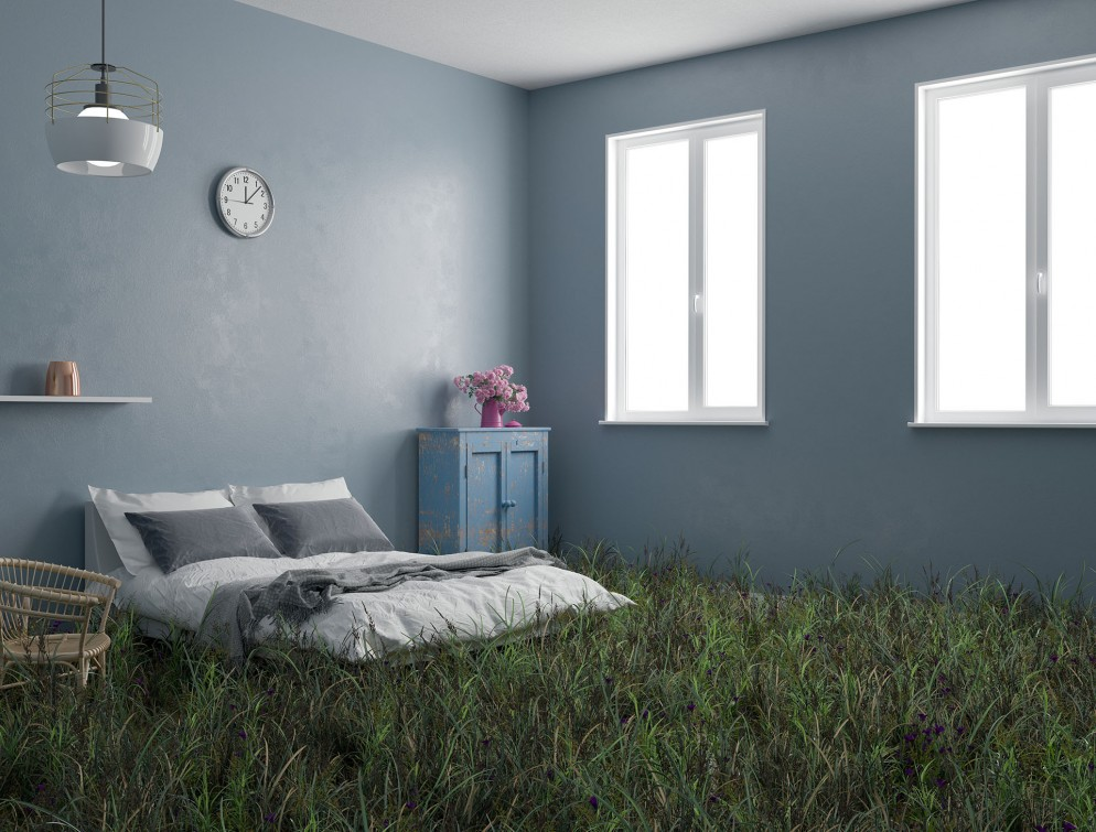 Wild lawn in a bedroom