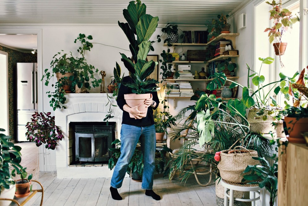 Full length of woman carrying potted plant at home