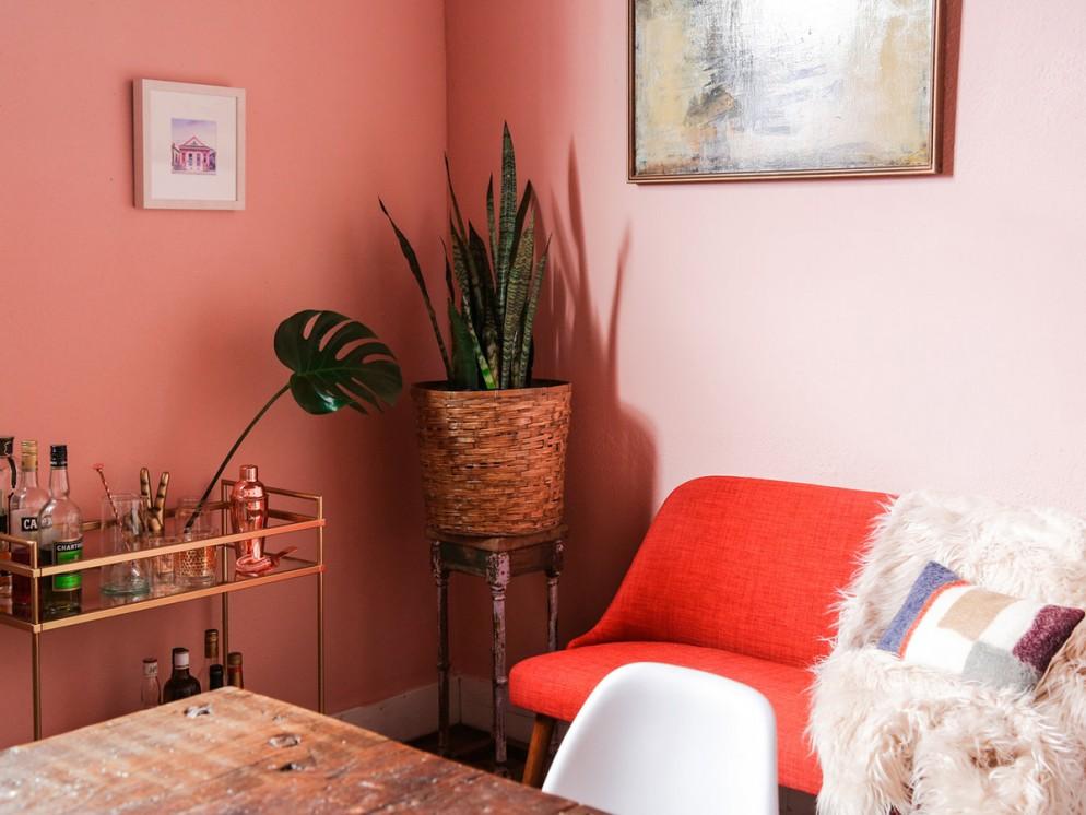 piante-eleganti-appartamento-sanseveria-living-corriere