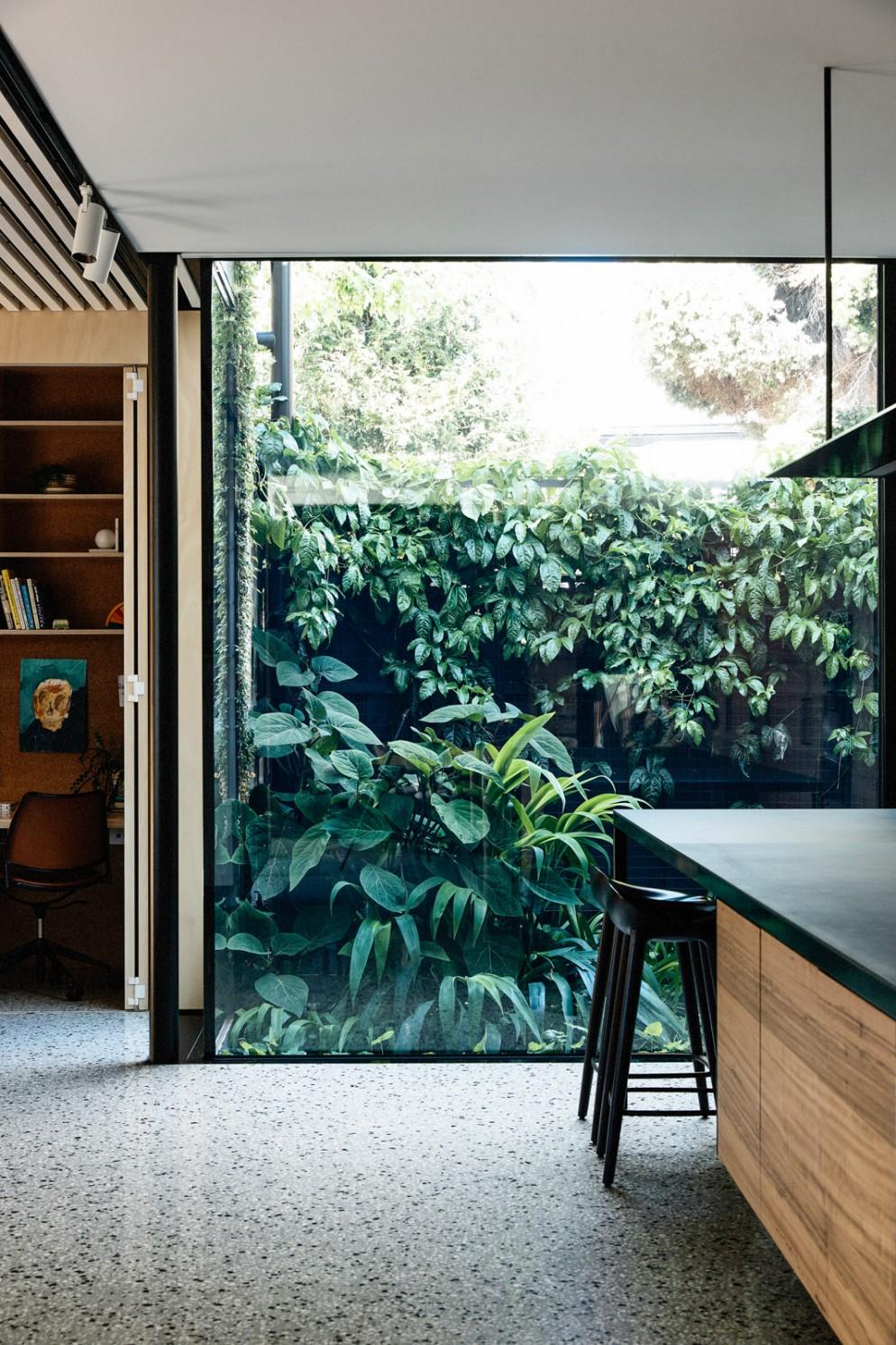 piante soggiorno moderno (1)