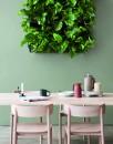 piante soggiorno moderno (13)