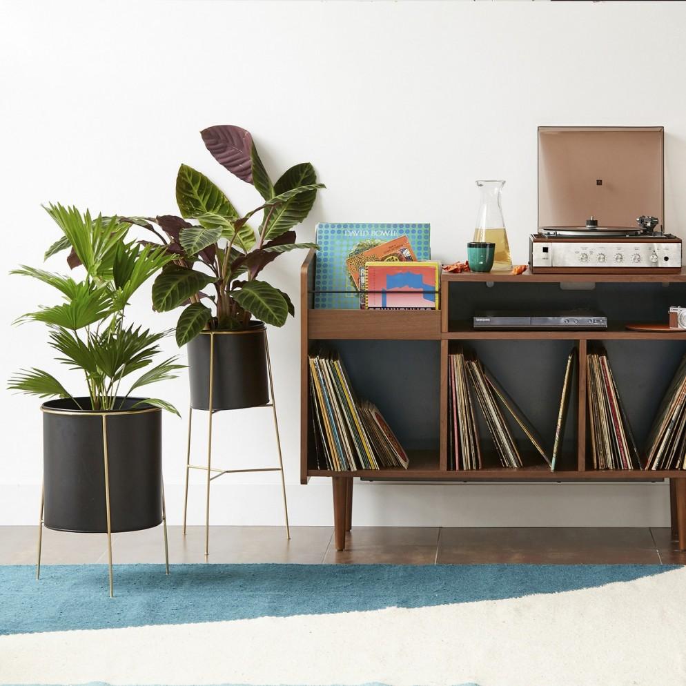 piante soggiorno moderno (9)