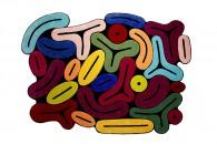 tappeti-moderni-forme-strane-RocheBobois_TUTTI_FRUTTI_TAPIS_collezione Bombom-living-corriere