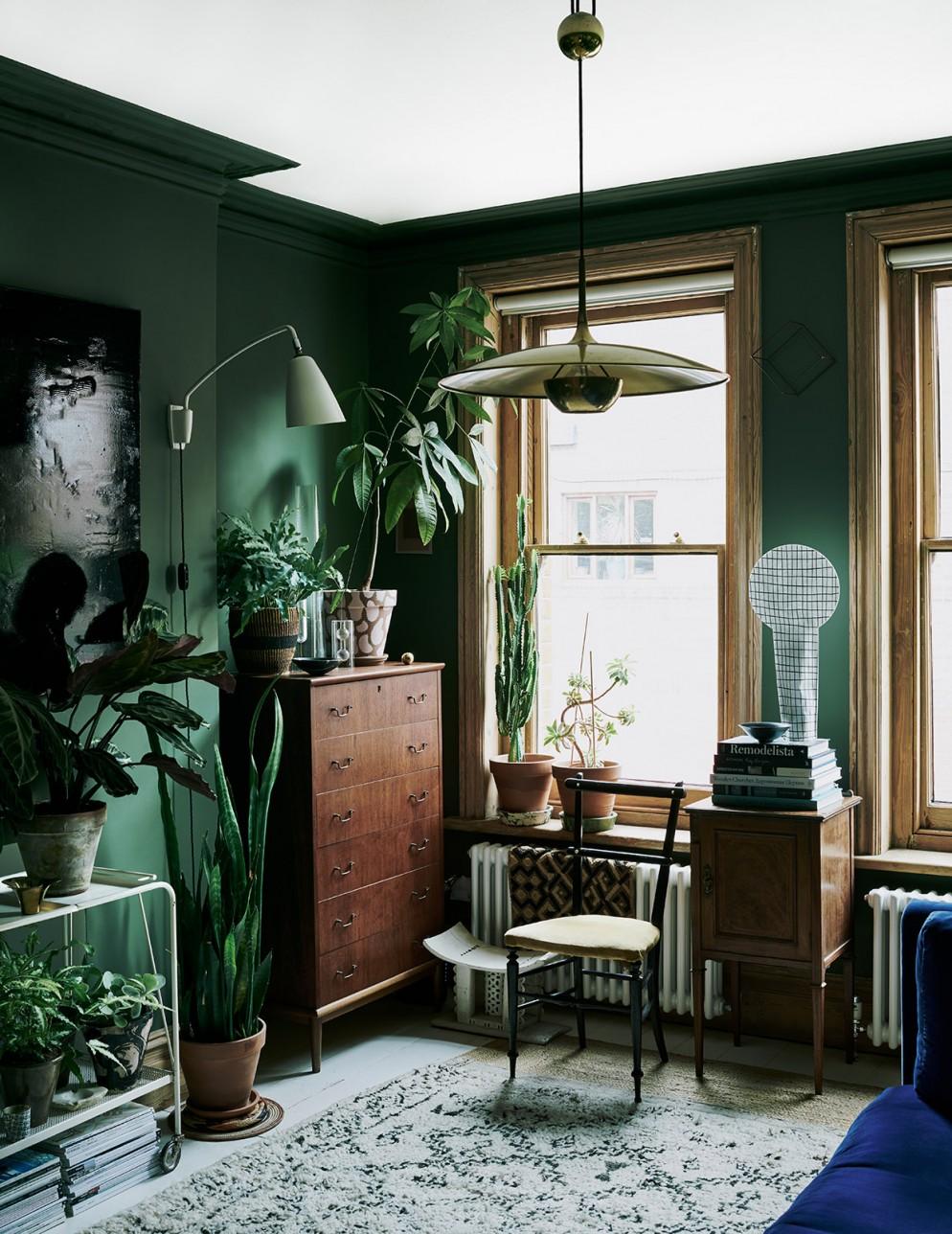 urban jungle arredamento verde