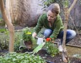 app-cura-di-piante-2021